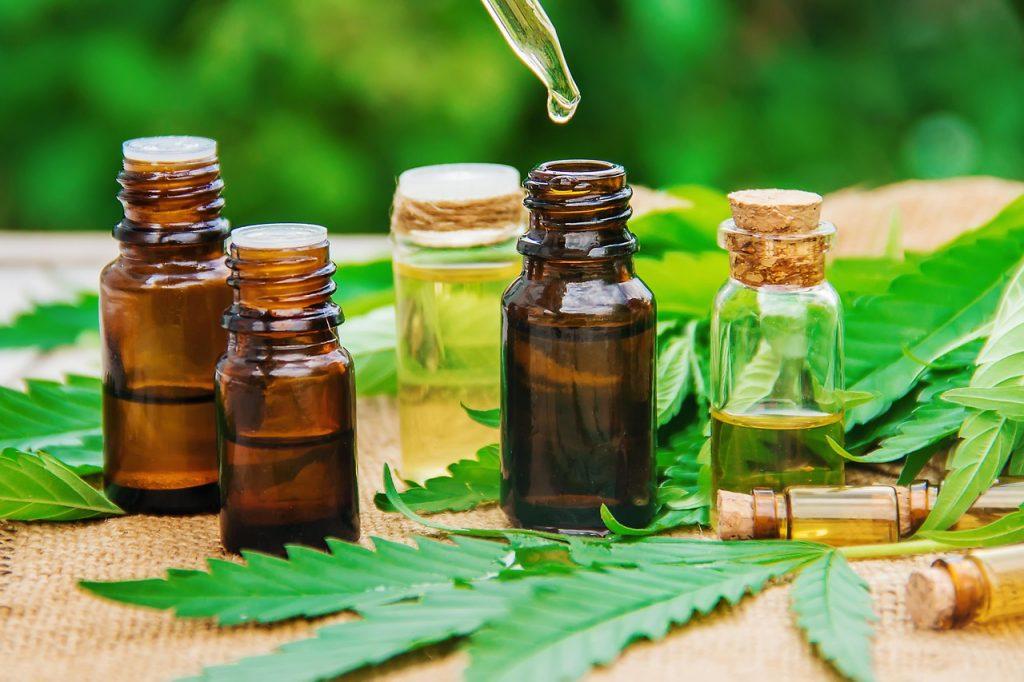 utilizing cannabis bloom